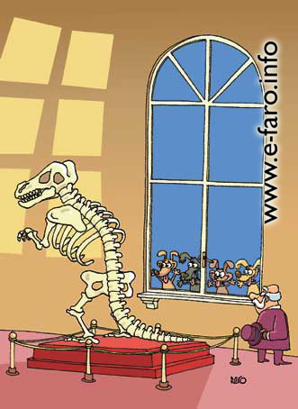a030 perros huesos rex