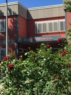 Fontmartina 1